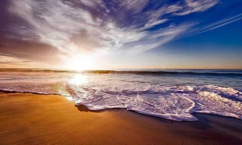 Πήγαν βόλτα στη θάλασσα - «Πάγωσαν» μόλις είδαν τι είχε ξεβραστεί στην ακτή (video)