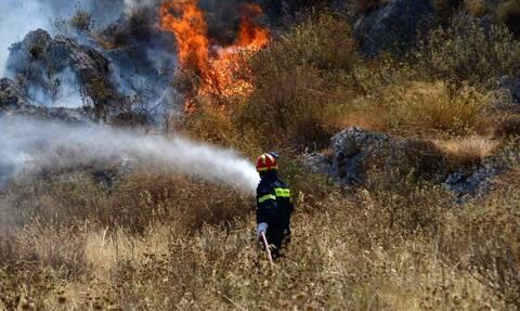 Φωτιά ΤΩΡΑ: Πυρκαγιά πίσω από τα κοιμητήρια Ευόσμου στη Θεσσαλονίκη