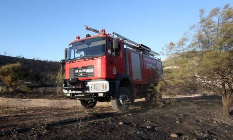 Συναγερμός στην Πυροσβεστική: Φωτιά στον ΧΥΤΑ Χαλκίδας
