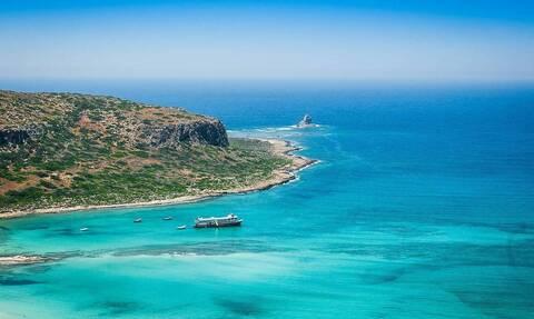 Κρήτη: Τρόμος από γιγάντιες τσούχτρες (video)