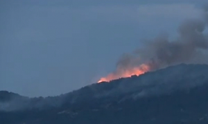 Лесной пожар на Афоне удалось взять под контроль