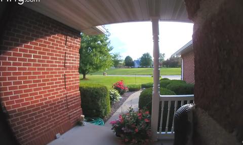 Κοίταξαν την κάμερα της πόρτας τους - Δεν πίστευαν αυτό που αντίκρισαν (vid)