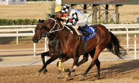 Markopoulo Park: Επιστροφή των ελληνικών ιπποδρομιών με θέαμα και κέρδη