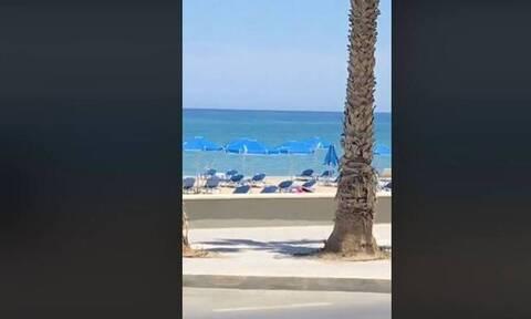Ρέθυμνο: Έπαθαν πλάκα στην παραλία – Δείτε τι έβγαλε βόλτα (video)