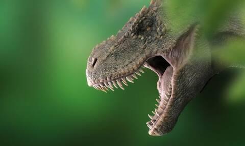 Ανακαλύφθηκε δεινόσαυρος μεγαλύτερος από τυραννόσαυρο