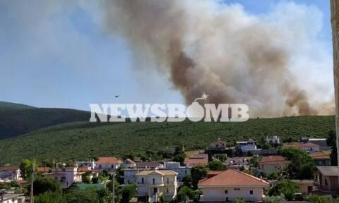 Φωτιά ΤΩΡΑ στο Μαρτίνο Φθιώτιδας: Έκλεισε η Ε.Ο Αθηνών - Λαμίας
