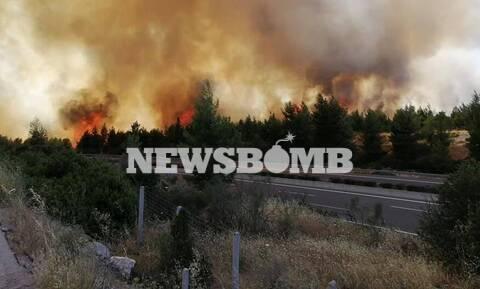 Φωτιά Μαρτίνο: Οι φωτογραφίες του Newsbomb.gr από τον πύρινο εφιάλτη
