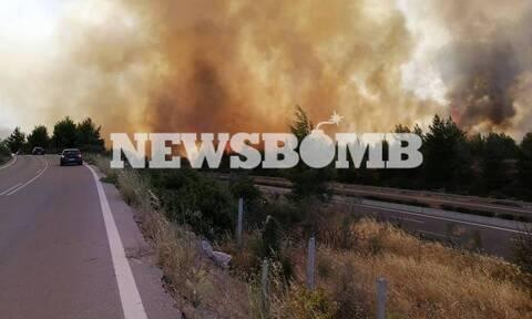 Φωτιά ΤΩΡΑ στο Μαρτίνο: Καίει και στις δύο πλευρές της Eθνικής Oδού (pics)