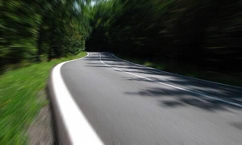 Είδε στον δρόμο κάτι τεράστιο να κινείται - Τρελάθηκε μόλις διαπίστωσε τι ήταν (pics+vid)