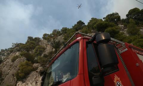 Φωτιά ΤΩΡΑ στο Πόρτο Γερμενό: Συναγερμός στην Πυροσβεστική