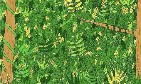 Τεστ: Μπορείτε να βρείτε το φίδι που υπάρχει στο δάσος; (pics)