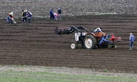 ΕΛΓΑ: Έρχεται πλαφόν στις αποζημιώσεις των αγροτών