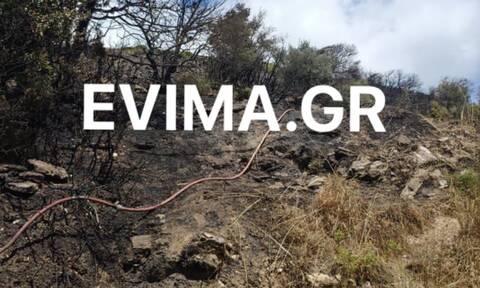 Εύβοια: Υπό έλεγχο η φωτιά στην Κάρυστο