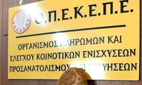 ΟΠΕΚΕΠΕ: Νέα πληρωμή 15,9 εκατ. ευρώ σε 9.193 δικαιούχους αγρότες