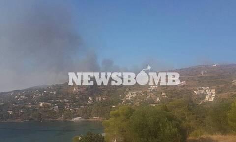Φωτιά - Αίγινα: Τι λέει Δημοτικός Σύμβουλος στο Newsbomb.gr