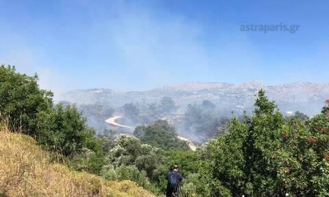 Μεγάλη φωτιά στη Χίο - Προς εκκένωση οικισμοί