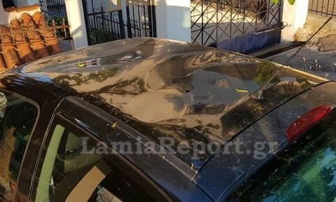 Απίστευτες εικόνες στη Λαμία: Κατσίκες έστησαν πάρτι σε «ουρανό» αυτοκινήτου