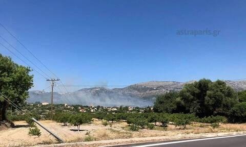 Μεγάλη φωτιά στη Χίο: Σε ύφεση το μέτωπο (pics+vid)