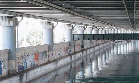 Κηφισός: Απίστευτες εικόνες! Έπιασαν κέφαλους στη γέφυρα του Ρέντη! (pics)