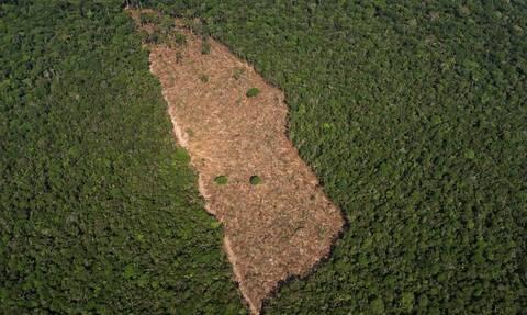 Βραζιλία: Φωτιές - ρεκόρ στον Αμαζόνιο τον Ιούνιο