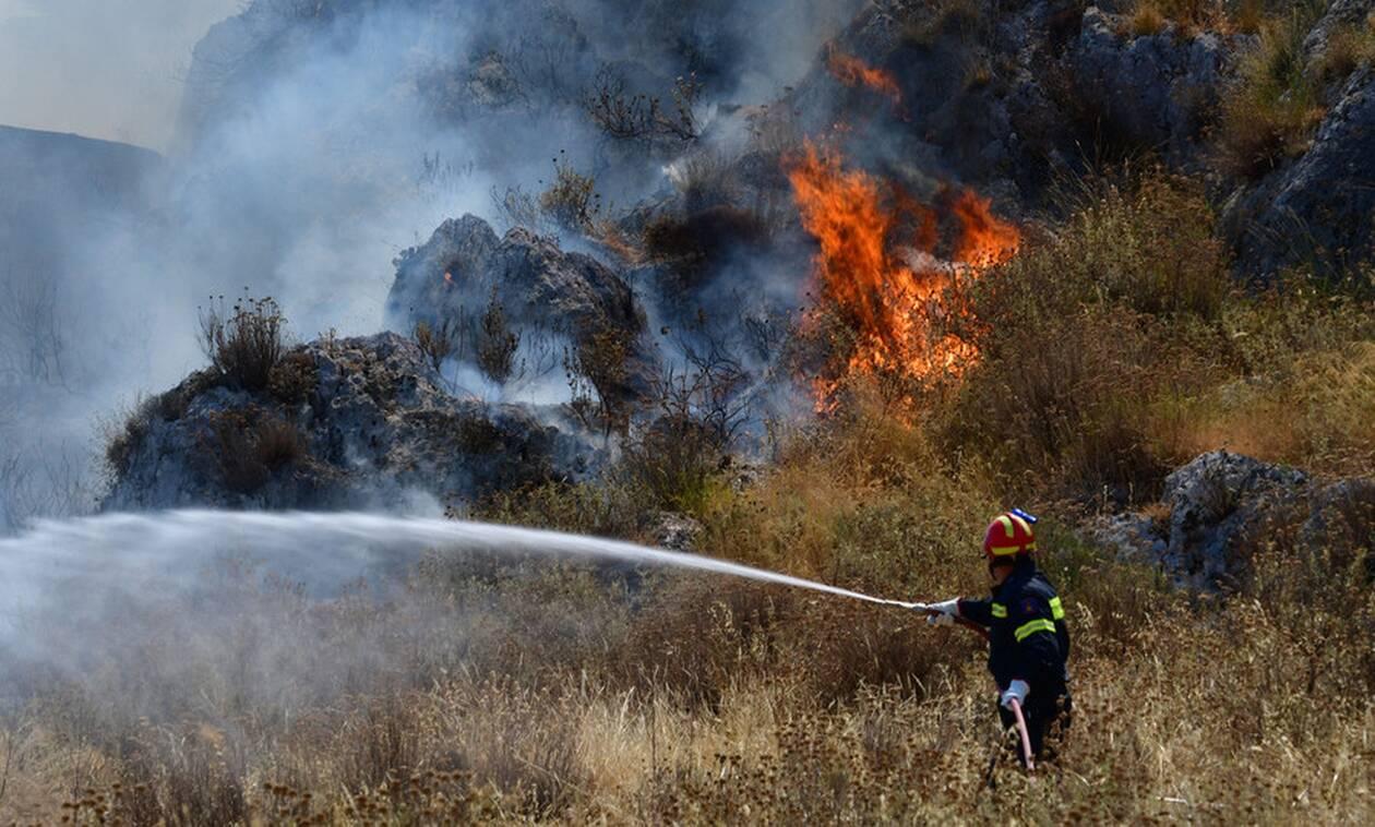 Φωτιά ΤΩΡΑ στην Κνωσό - Μαίνεται κοντά σε σπίτια