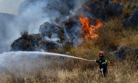 Φωτιά στην Κάρυστο: Υποψίες για εμπρησμό