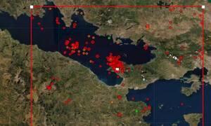 Ανήσυχος ο Γεράσιμος Παπαδόπουλος για τη σεισμική δραστηριότητα στις Αλκυονίδες