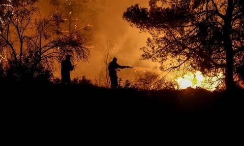 Φωτιά στην Κάρυστο: Υπό μερικό έλεγχο η πυρκαγιά