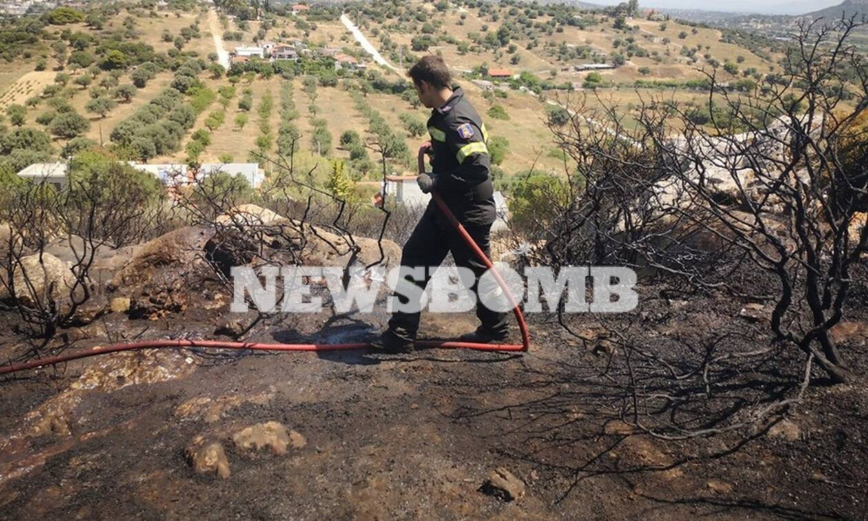 Σπάτα: Υπό έλεγχο η φωτιά που έκαψε δασική έκταση