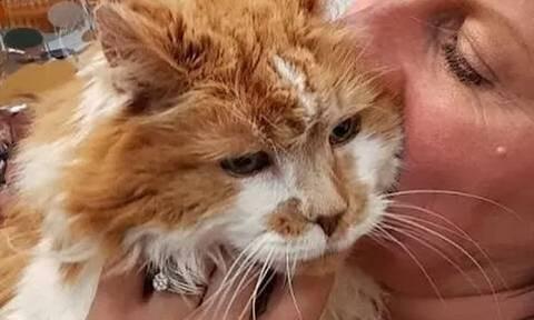 Πέθανε η γηραιότερη γάτα στον κόσμο – Δείτε πώς ήταν στα γεράματα