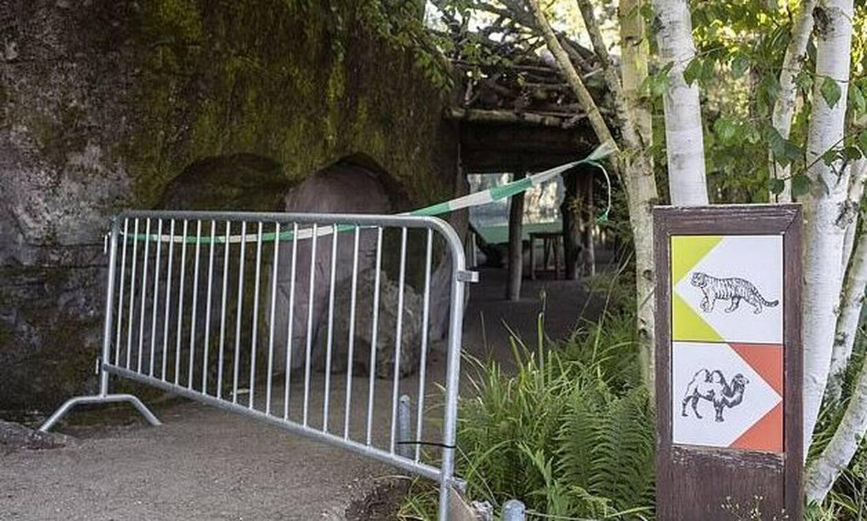 Τίγρη κατασπάραξε φύλακα σε ζωολογικό κήπο