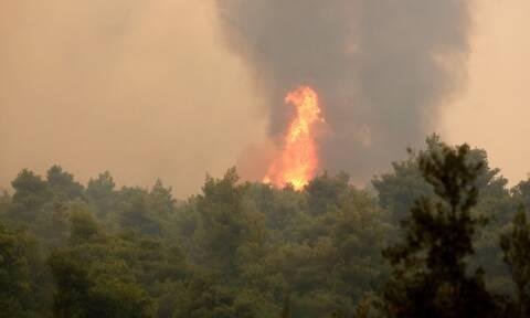 Φωτιά στην Αττική: Πυρκαγιά στον Άγιο Στέφανο
