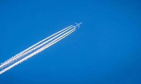 Λαχτάρα στον αέρα: Αεροπλάνο «χτυπήθηκε» από σμήνος πουλιών (pics)