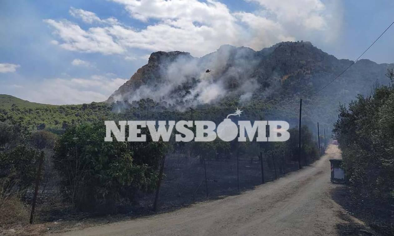 Φωτιά ΤΩΡΑ: Συναγερμός στις Κεχριές Κορινθίας - Εκκενώθηκε κατασκήνωση