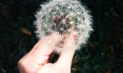 Αλλεργία: 5 τρόποι να την αντιμετωπίσεις