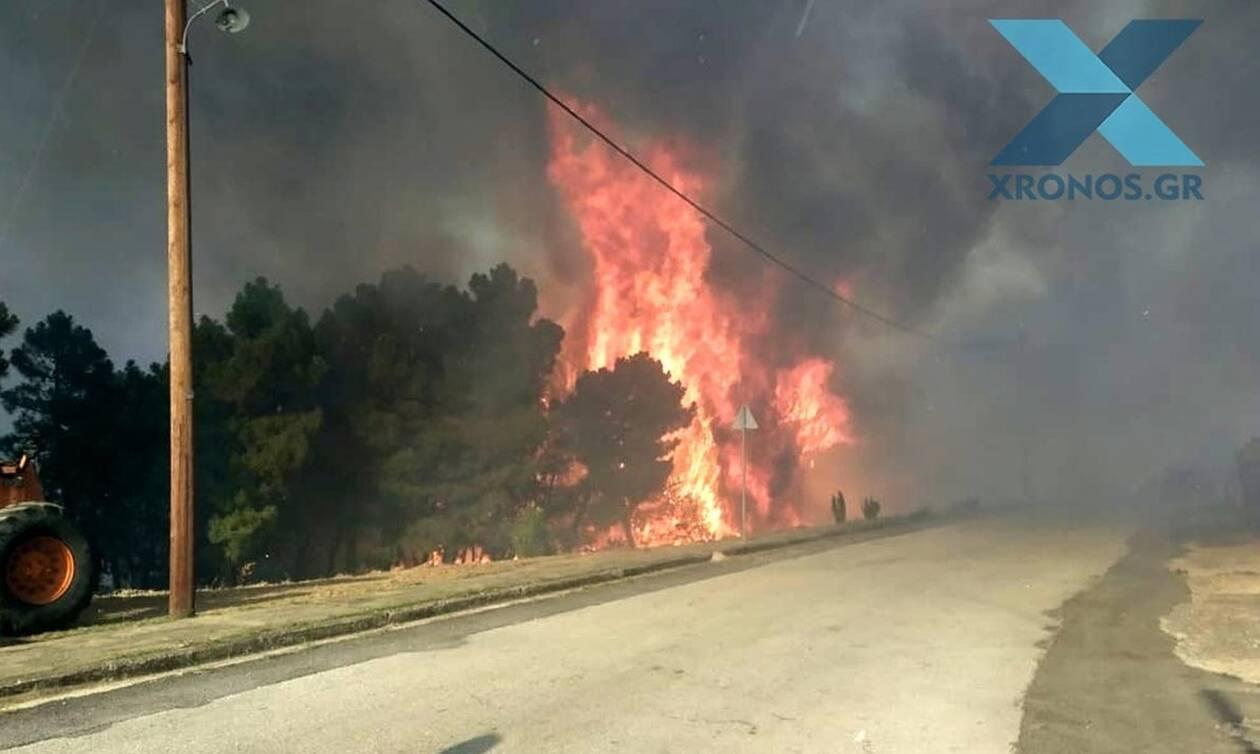 Φωτιά ΤΩΡΑ στις Σάπες Ροδόπης: Εκκενώθηκε οικισμός - Οι φλόγες στις αυλές των σπιτιών