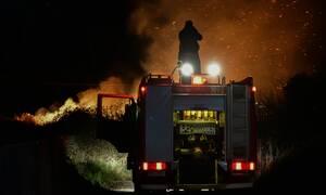 Φωτιά Σάπες: Ολονύχτια μάχη με τις φλόγες - Απειλήθηκαν κατοικίες