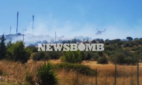 Φωτιά στη Βάρη: Τι δήλωσε ο Διευθυντής των παιδικών χωριών SOS στο Newsbomb.gr