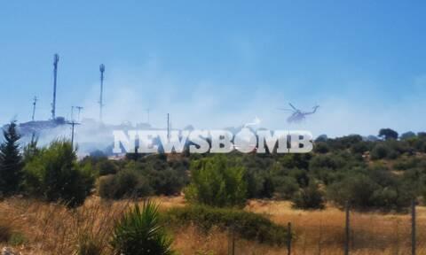 Φωτιά στη Βάρη - Κωνσταντέλλος στο Newsbomb.gr: Έχει τεθεί υπό έλεγχο το μέτωπο