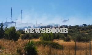 Из-за пожара в пригороде Афин Вари эвакуированы дети центра «Paidika xoria SOS»