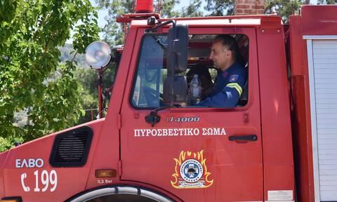Φωτιά ΤΩΡΑ στην Κρήτη: Πυρκαγιά στο χωριό Γωνιές