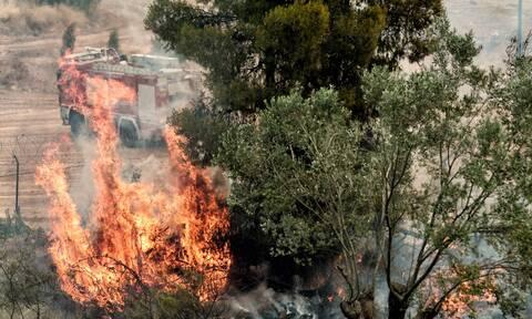 Φωτιά ΤΩΡΑ στον Ασπρόπυργο - Ισχυρές πυροσβεστικές δυνάμεις στο σημείο