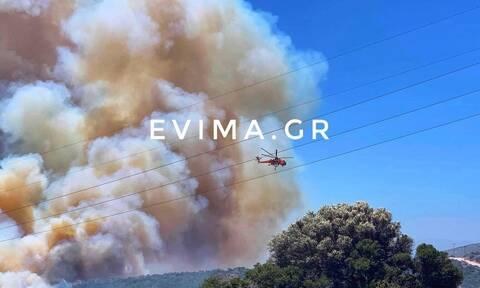 Εύβοια: Εκτός ελέγχου η φωτιά - Εκκενώθηκε οικισμός - Τεράστια κινητοποίηση