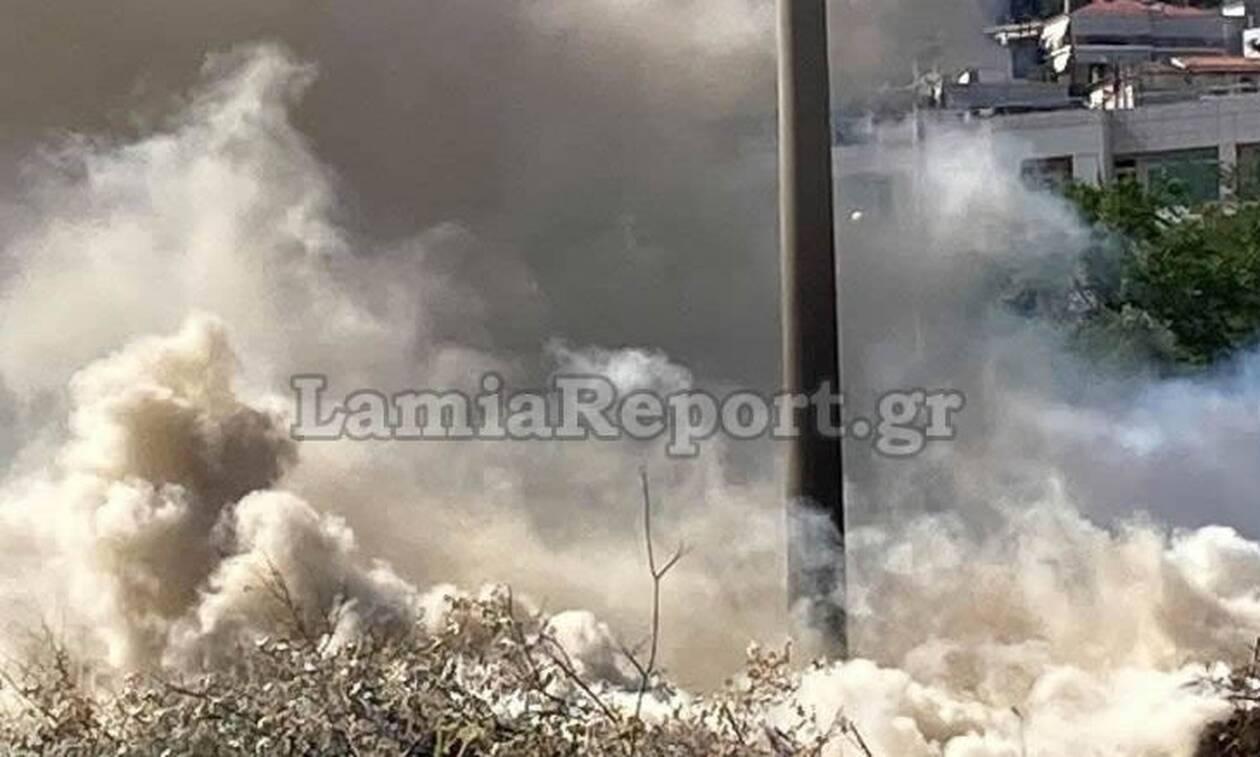 Λαμία: Μάχη με τις φλόγες μέσα στην πόλη (pics & vid)