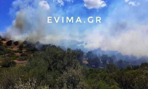 Εύβοια: Οριοθετήθηκε η φωτιά στους Ραπταίους Καρύστου
