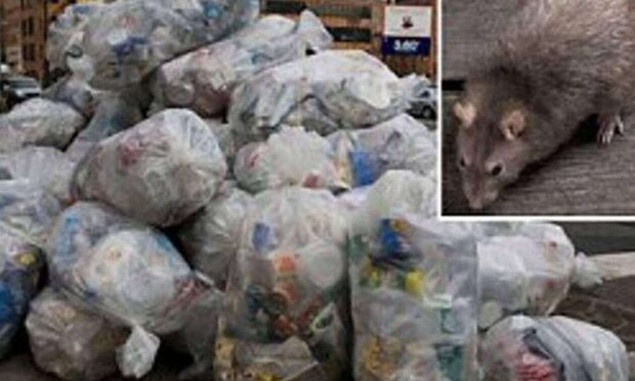 Αυτό που είδε μέσα στα σκουπίδια θα το θυμάται για όλη του τη ζωή!
