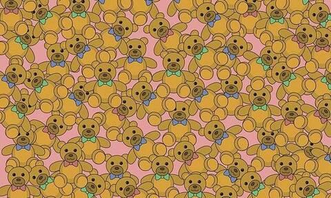Η viral σπαζοκεφαλιά - Μπορείς να βρεις το αρκουδάκι χωρίς παπιγιόν; (pics)