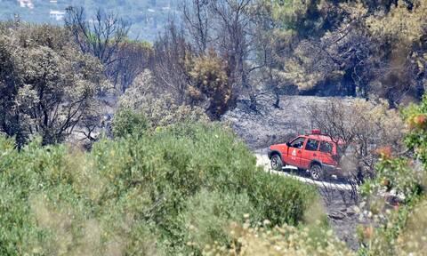 Πολύ υψηλός ο κίνδυνος πυρκαγιάς την Πέμπτη (χάρτης)