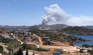 Φωτιά στο Λαύριο: Πώς ξέσπασε η μεγάλη πυρκαγιά - Επί ποδός η Πυροσβεστική