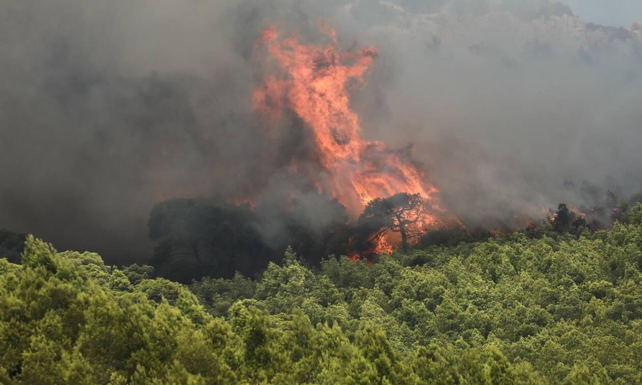 Φωτιά ΤΩΡΑ στην Πύλο Μεσσηνίας
